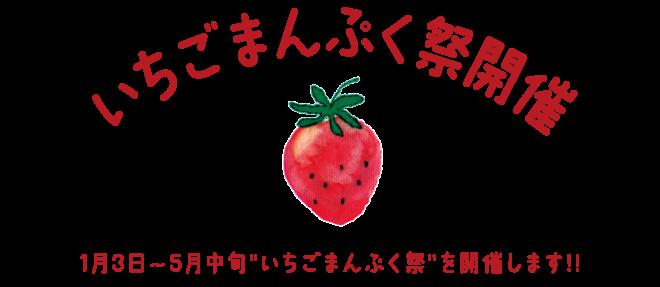 いちごまんぷく祭開催